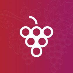 Vi.Vite– Vino di Vite Cooperative | Itinerarinelgusto