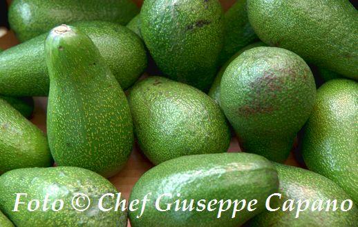 Qualche notizia in più sull'avocado